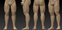 Legs2